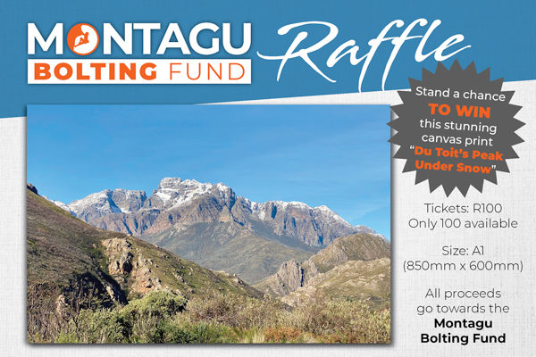 Montagu Bolting Fund Raffle